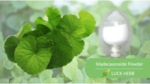 luckherb madecassoside powder