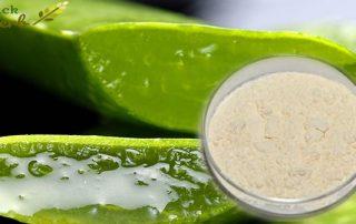 Aloe Vesa Powder