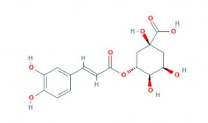 chlorogenic acid structure