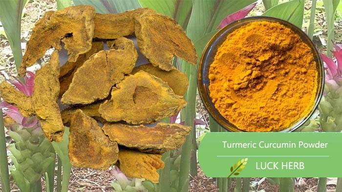 luckherb curcumin powder