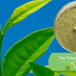 luckherb green tea Polyphenols