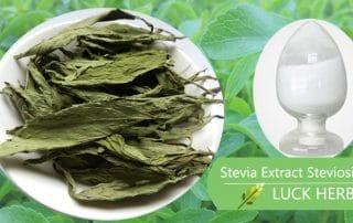 luckherb stevia extract