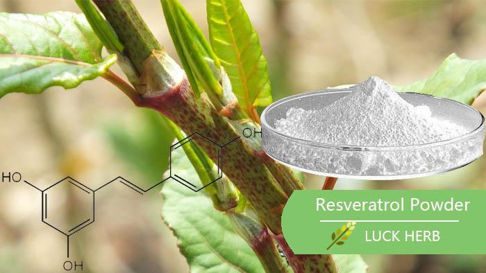 Luckherb resveratrol extract